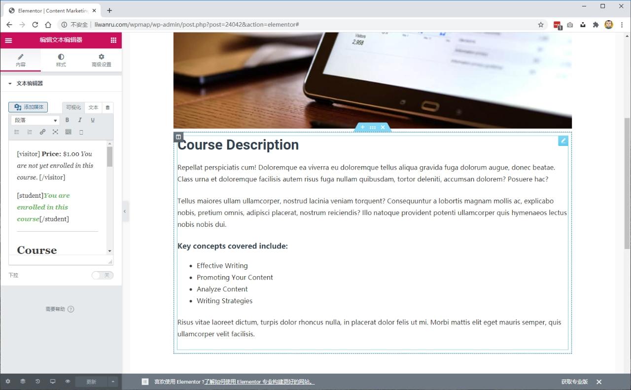 "用Elementor插件和ASTRA主题,构建""免费""WordPress网站 - elementor4"